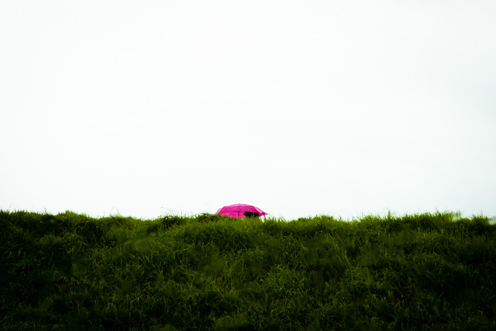 Pink Umbrella, San Francisco