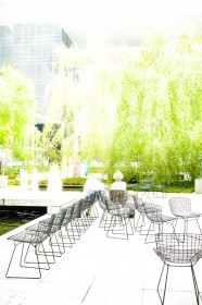 MoMA garden, NYC by Carine