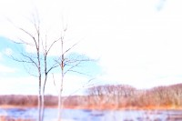 LAKE WARAMAUG by Carine