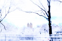 WHITE WINTER, NEW YORK by Carine
