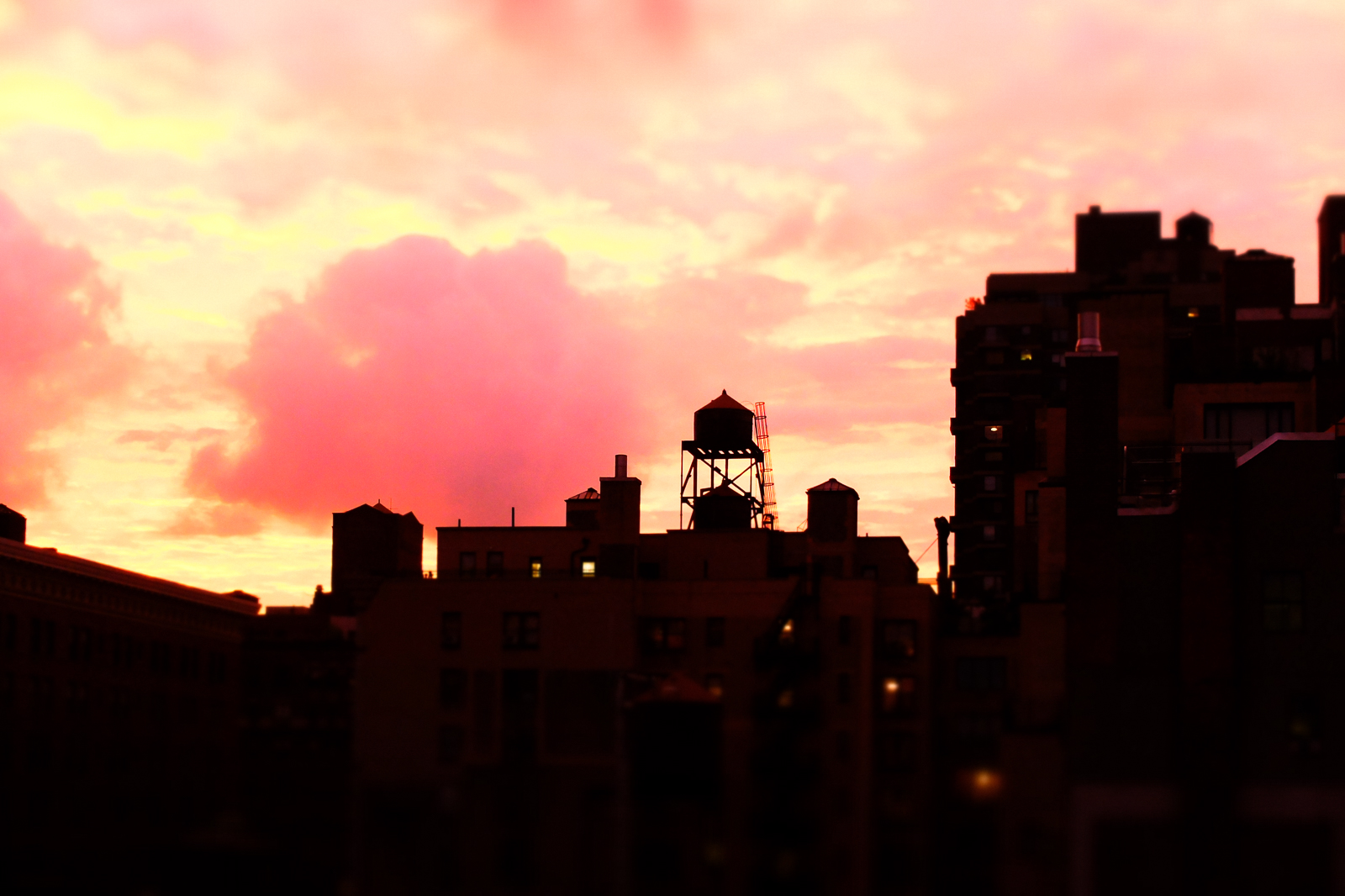 BARBAPAPA, NYC by Carine