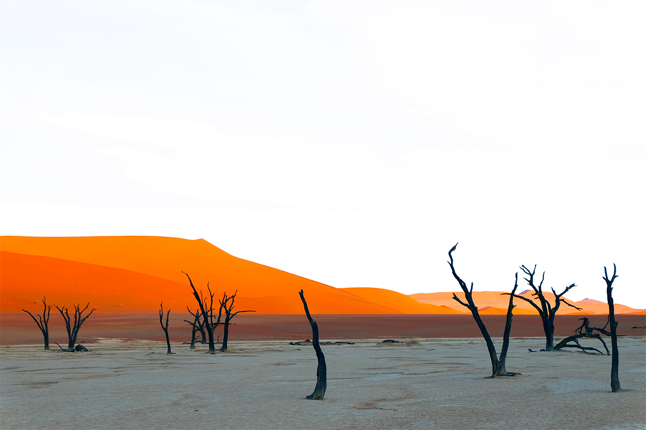 DEAD VLEI, NAMIBIE by Véronique