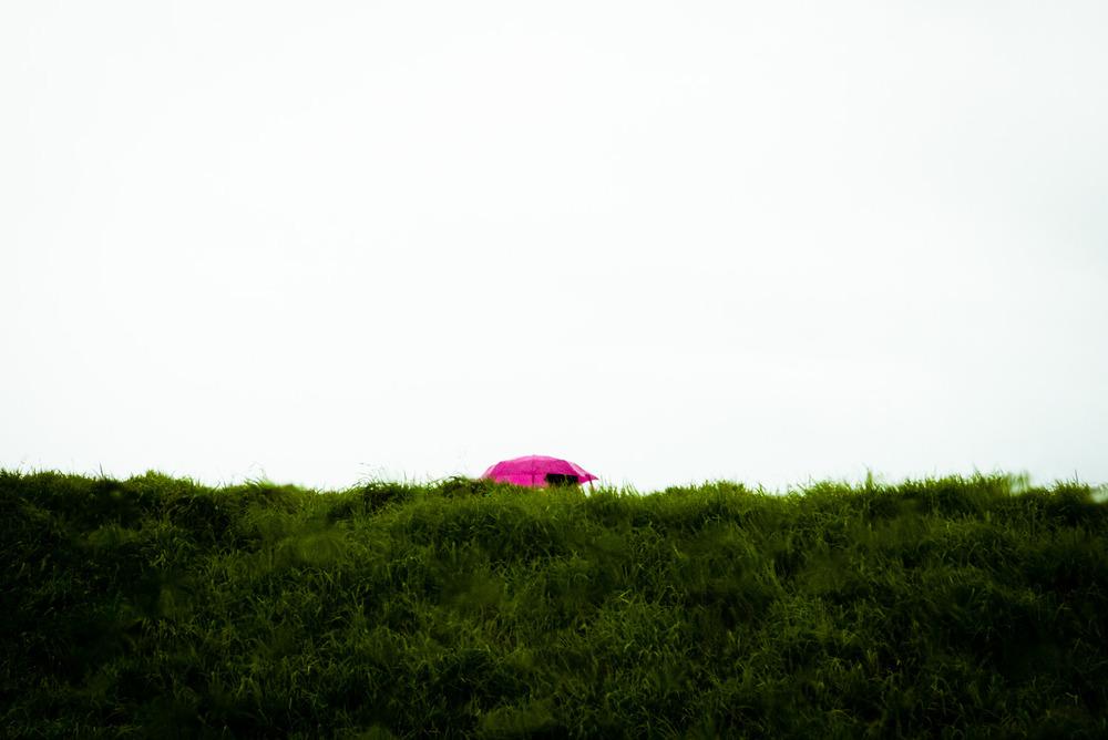 Pink Umbrella, San Francisco