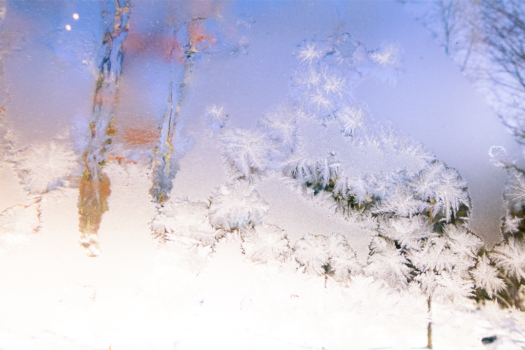 SNOW and WISHES, CONNECTICUT by Carine