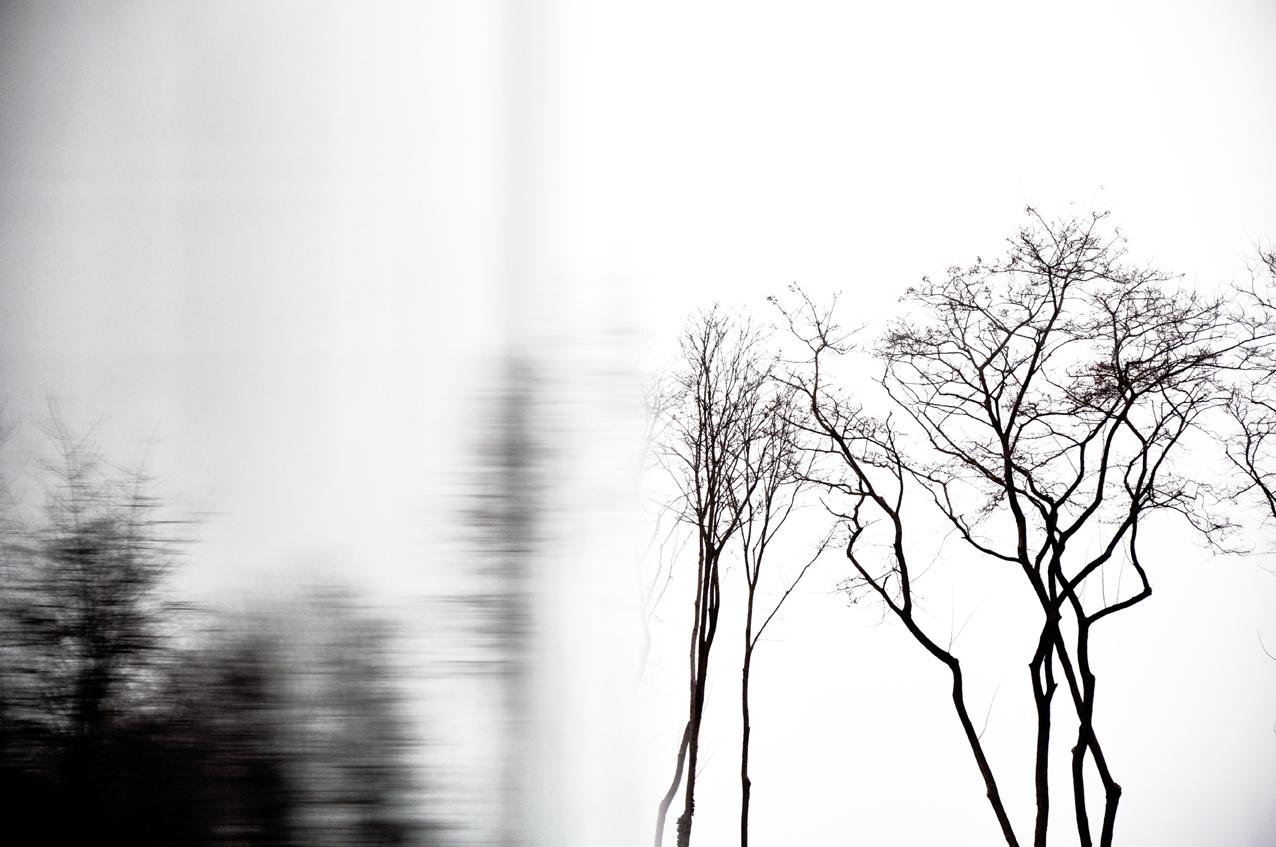 REFLEXION HIVERNALE, LENS by Véronique