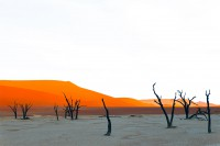 DEAD VLEI, NAMIBIE by Véronique