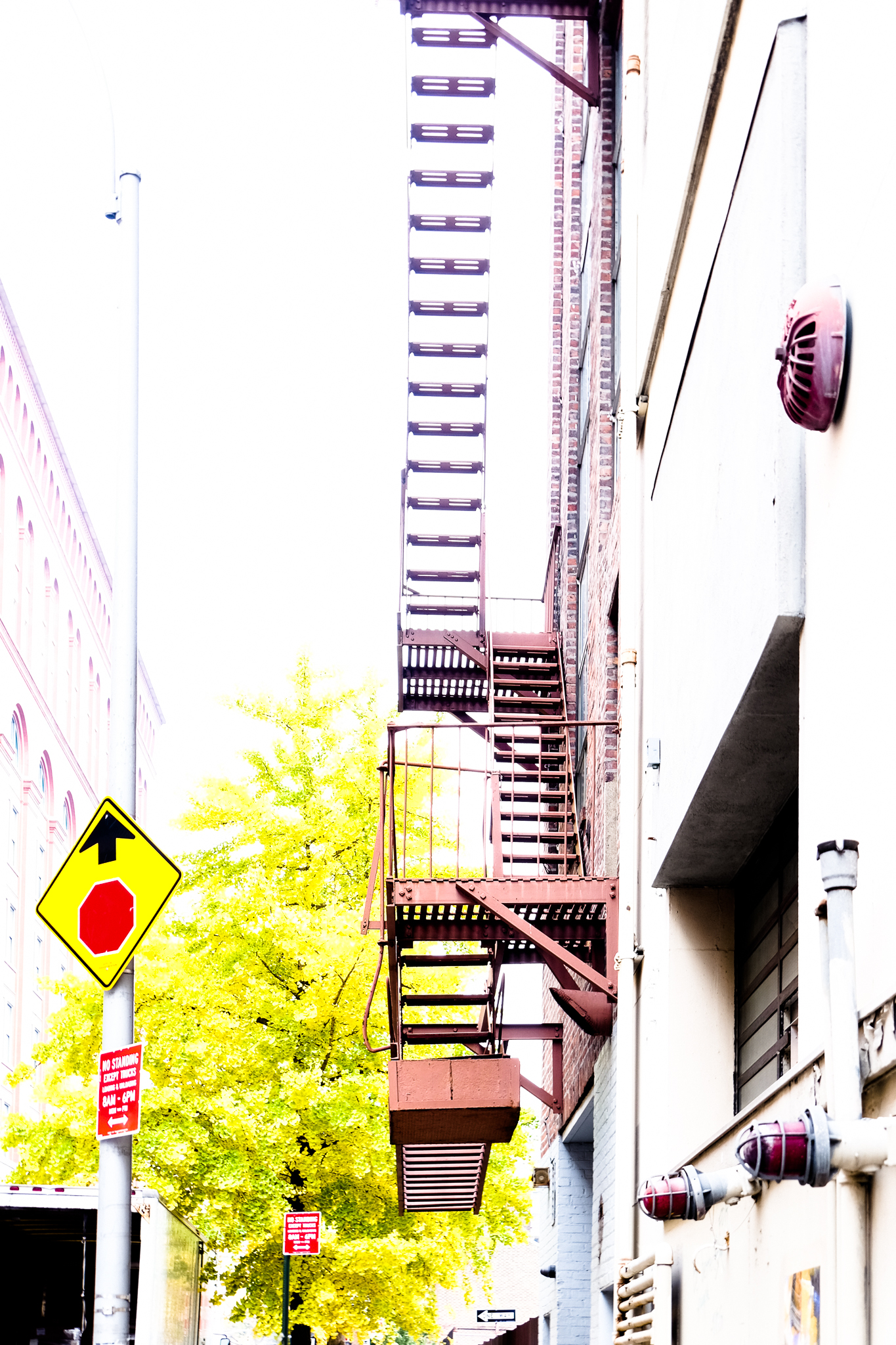 STAIRS TO NOWHERE, NYC  by Carine
