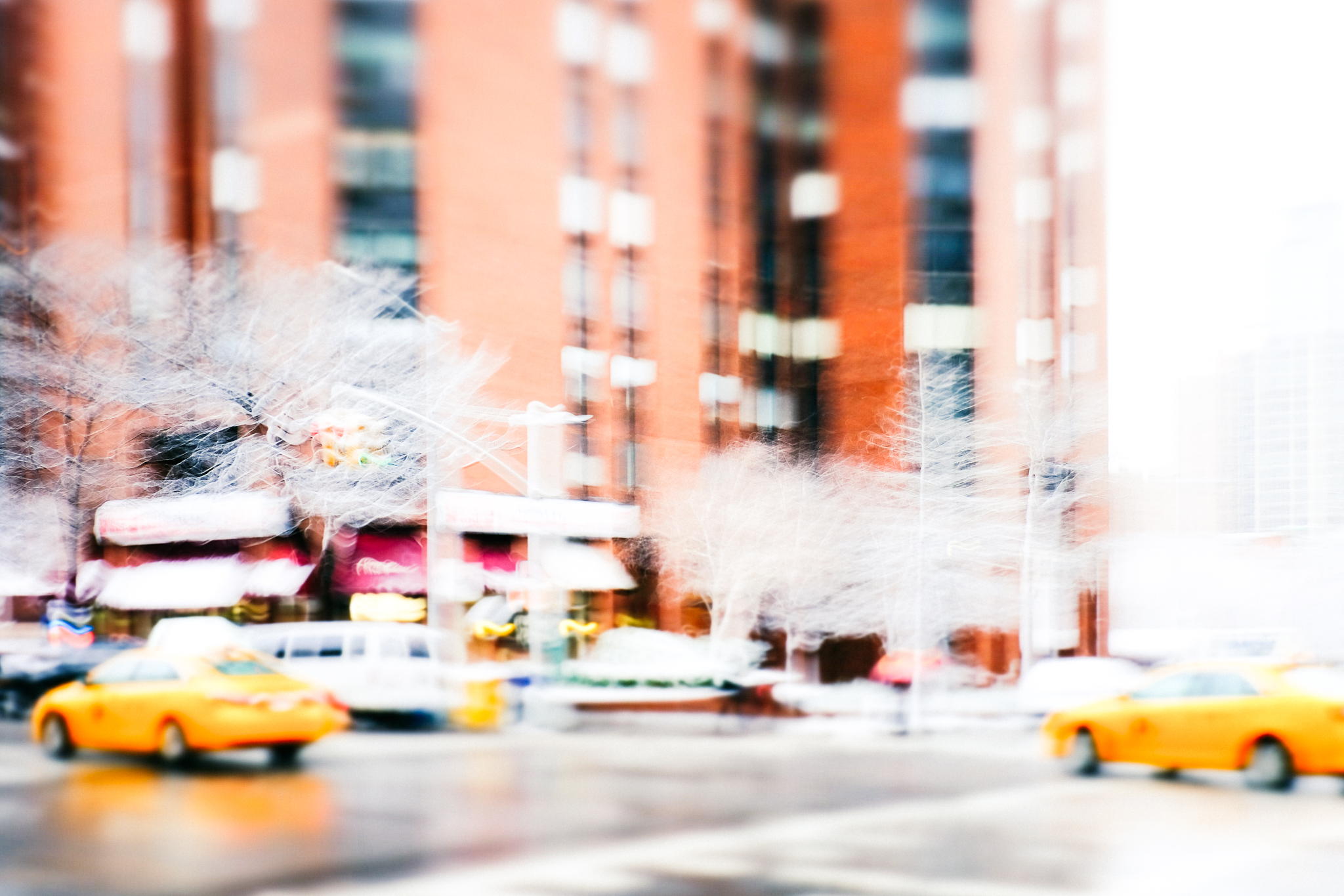 BOMB STORM and other pleasures, New York by Carine